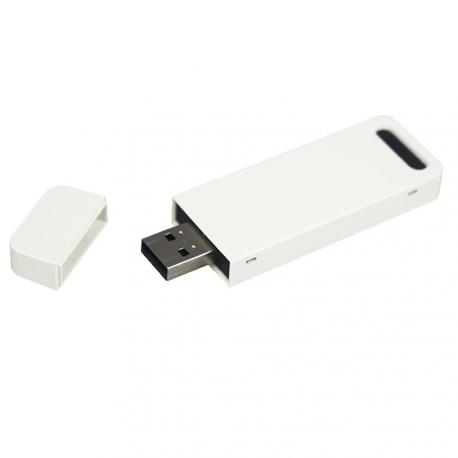 MODULO DE SEGURIDAD MINI USB - Imagen 1