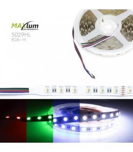 TIRA LED FLEX RGBW 6500K 5m 60 LED/m 5050 24V IP-20 - Imagen 1
