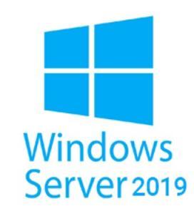 Windows server 2019 5 licencias cal español